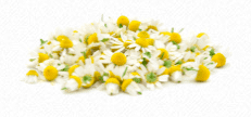 chamomile extract for facial cleansers