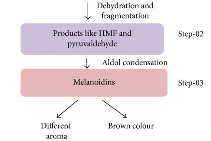 maillard reaction in our skin